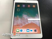 ipad mini2 16gb Wifi+Cellular Á×ÍÊͧ